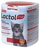 Beaphar Lactol, Latte in Polvere per Gattini, Sostituzione del Latte materno